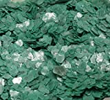Jade Green Natural Mica Flakes - One Pound - #311-4381