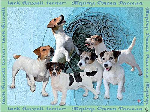 Gabriella Artioli - Foulard 100% pure voile de soie avec Jack Russell