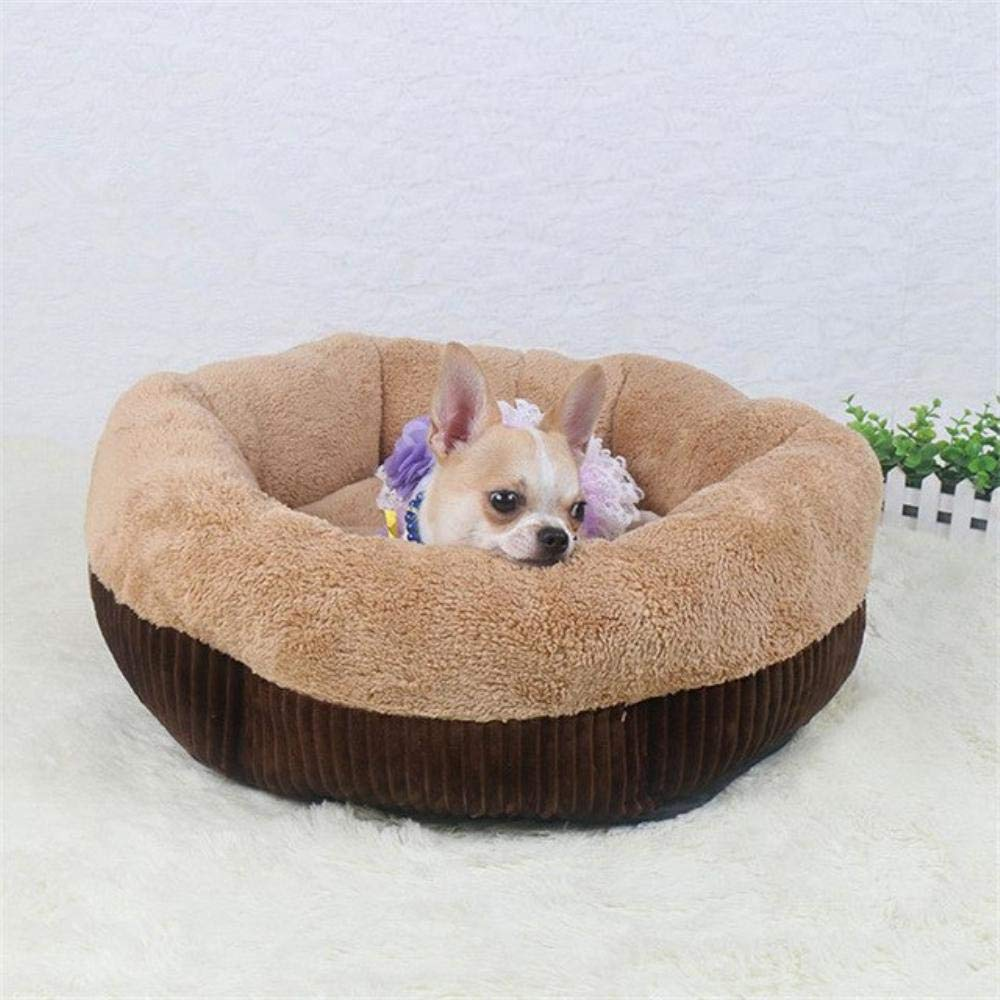 caffè L 65x65x23cm caffè L 65x65x23cm Dog Beds for Small Dogs Winter Warm Deep Dish Cat /Dog Dirt -Resist Water Bed House Soft Comfort Nest Cat Cuddler (L 65x6x5x23cm, Caffè)