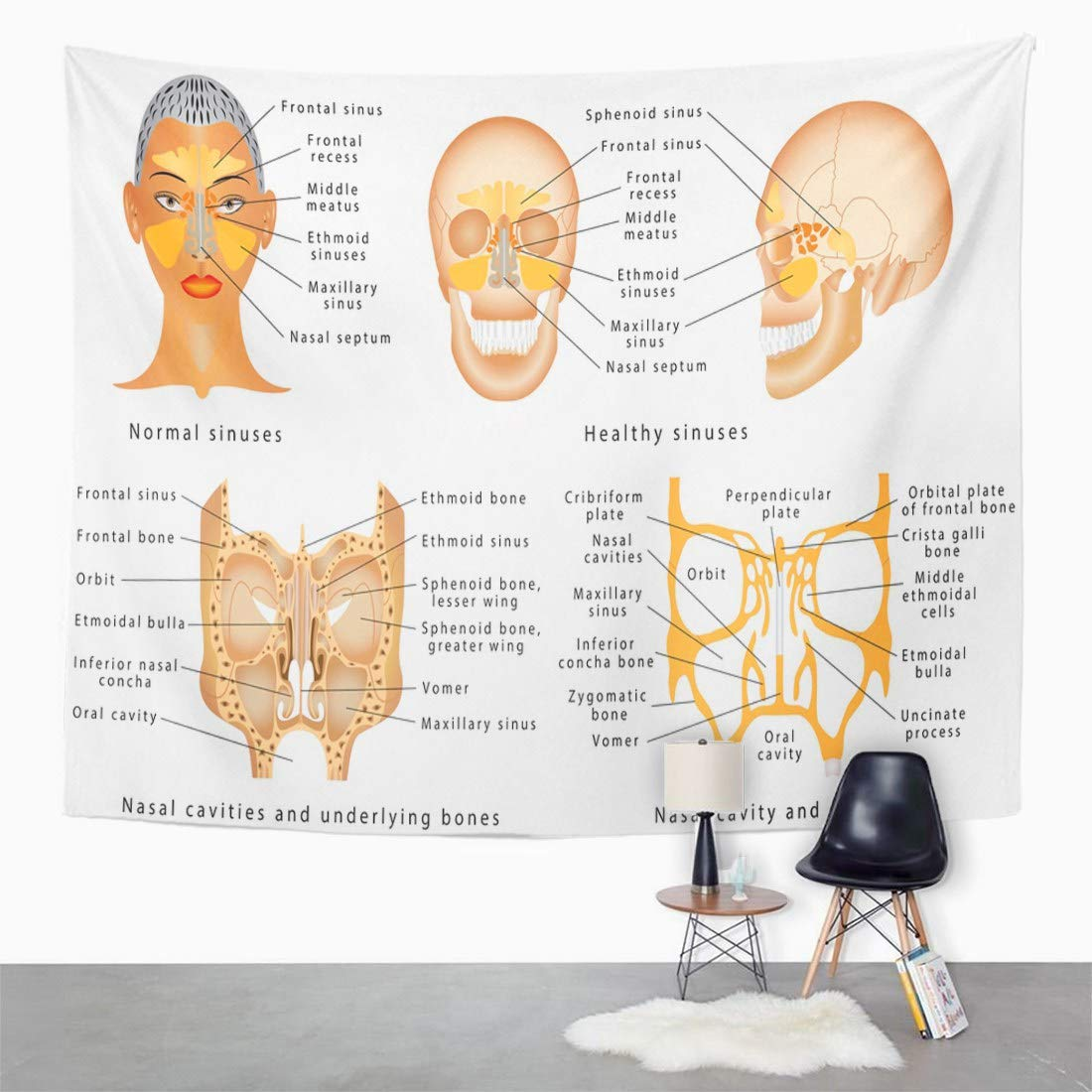 Amazon Emvency Wall Tapestry Sinuses Of Nose Human Anatomy