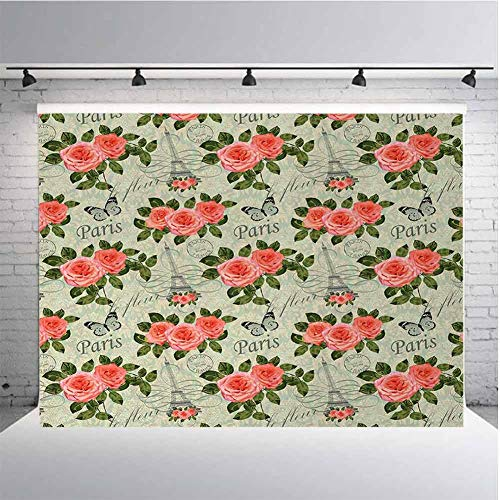 Shabby Chic Photography Background Cloth Paris Lettering with Roses and Leaves Abstract Pale Blue Grey Backdrop for Photography,Video and Televison 10ftx8ft Salmon and Green