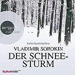 Der Schneesturm | Vladimir Sorokin