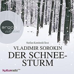 Der Schneesturm Hörbuch