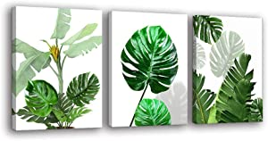 Canvas Wall Art for Bedroom - Tropical Plants Pictures Wall Decor Simple Green Leaves Palm Monstera Leaf Paintings Botanical Prints Artwork 3 Pieces Framed Minimalist Painting for Bathroom Office Living Room Modern Home Decorations Contemporary Painting Ready to Hang