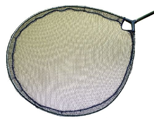 Blagdon Interpet Pond 55cm Koi Flat Inspection Head Net by - Koi Interpet
