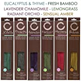 Hosley 300 Pack Assorted Highly Fragranced Incense Sticks with Bonus Holder - Eucalyptus & Thyme , Fresh Bamboo , Lavender Chamomile , Lemongrass , Radiant Orchid , Sensual Amber