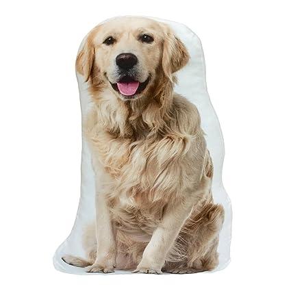 Amazon.com: dorado Retriever perro Stuffed Shaped Throw ...