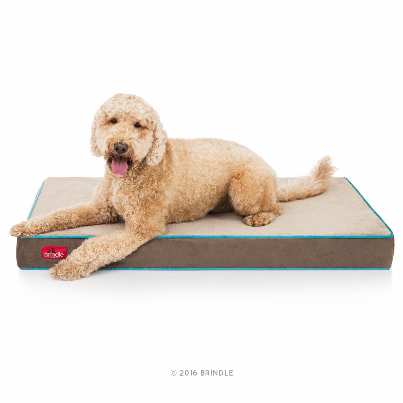 Brindle Soft Velour Pet Bed, Large 46 x 28, Mocha Blue by Brindle