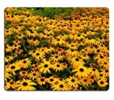General High Quality Wild Yellow Flowers Field Nature Mouse Pads