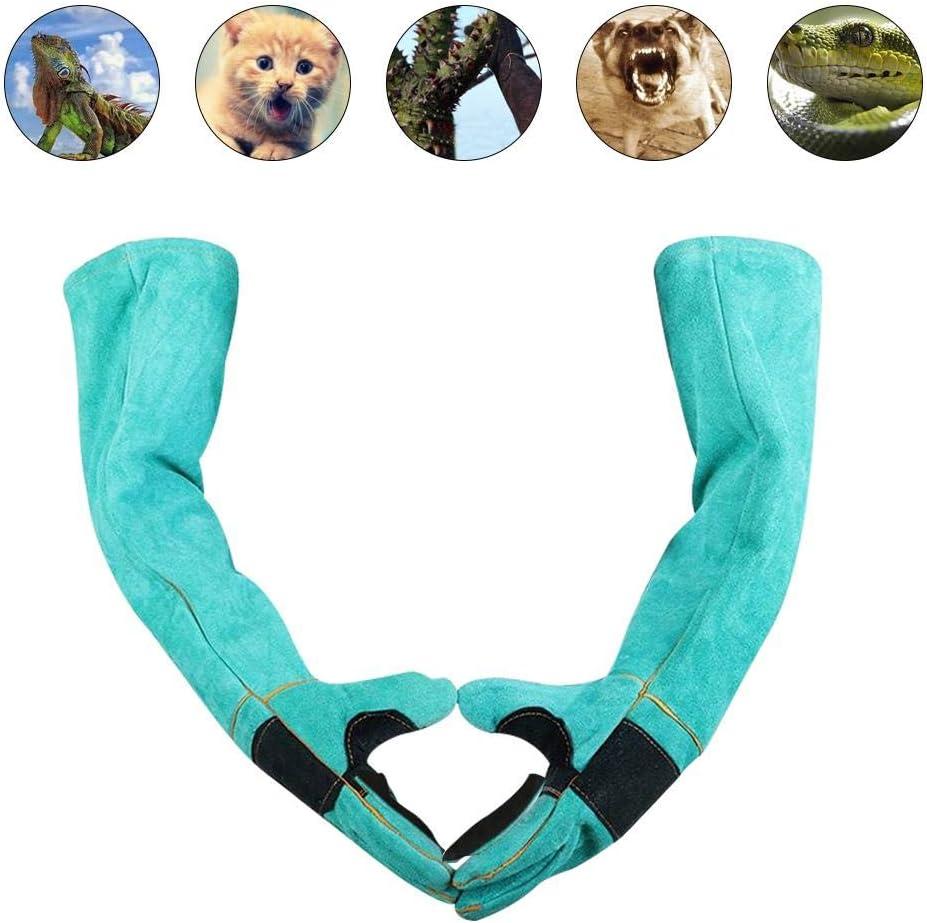Goodtimera - Guantes de Animales Ultra Largos para Perros, Gatos y Loros, Guantes para Animales Salvajes contra mordiscos/arañazos