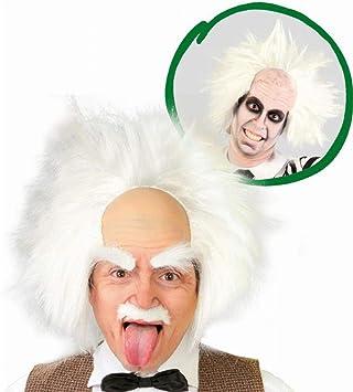 Peluca de Doctor Einstein
