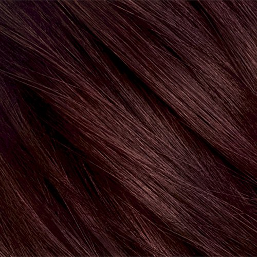 Clairol Natural Instincts 4rr 20r Malaysian Cherry Dark