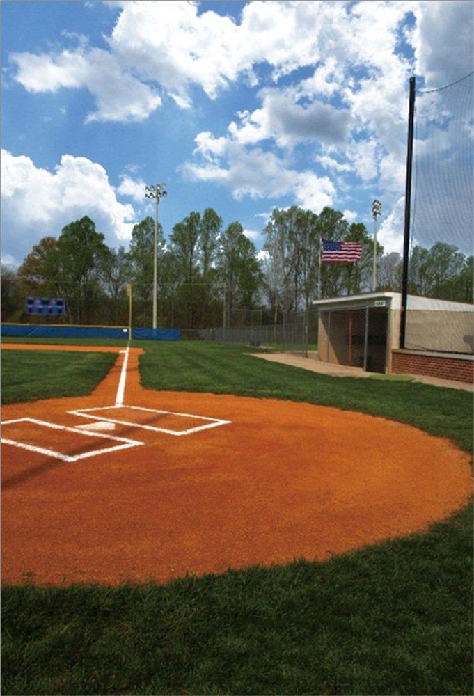 LFEEY 5x7フィート カントリー 野球 フィールド 写真 背景 ボール ゲーム 遊びテーマ グラスランド グラス スポーツ スタジアム ミードー 写真 背景 ビデオ ドレープ 写真スタジオ小道具   B07FQ8689R
