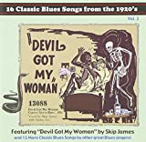 16 Classic Blues Songs from the 1920's, Vol. 3: Devil Got My Woman