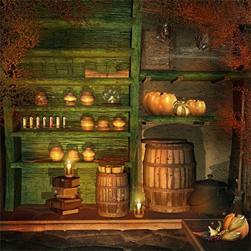 SZZWY Halloween Theme Backdrop 8x8ft Vinyl Photography Background Witch's Room Interior Green Closet Witchcraft Gallipot Colorful Drugs Buckets Weird Pumpkins Sorcery Trick Or Treat Party ()