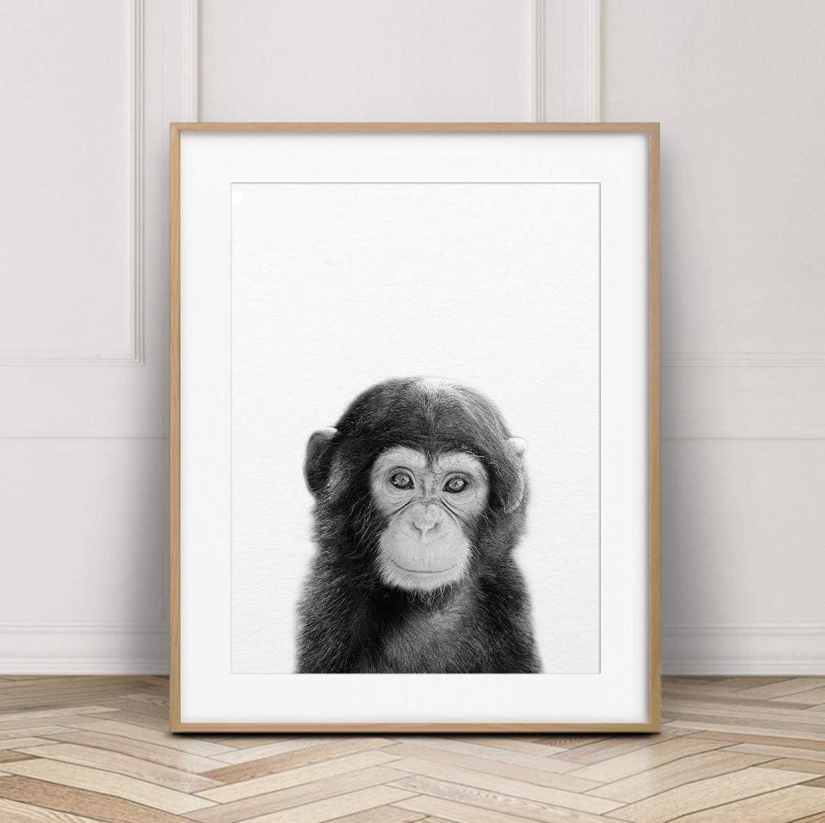 Monkey Nursery Art Jungle Baby Nursery Print Baby Animal Print Chimpanzee Print Jungle Animal Print Baby Monkey Print Nursery Wall Art