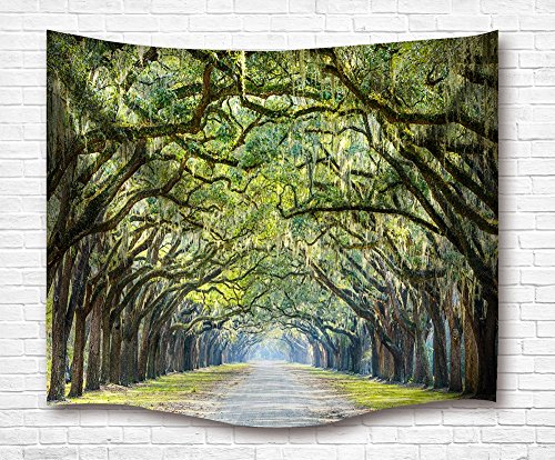 BJHAP Oak Trees Tapestry Wall Hanging Long Avenue in Arch Tree Covered Green Forest Wall Tapestries Sofa Cover Bedspread Dorm Accessories Wall Decor 60 x 51 Inches - Oak Tree Arch