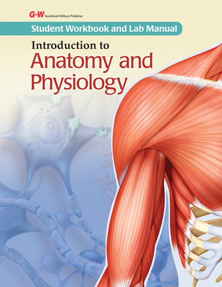 Buy Introduction to Anatomy and Physiology Student Workbook and Lab ...