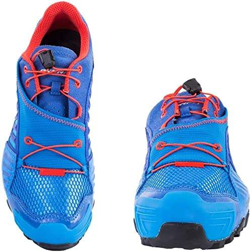 Dynafit - Zapatillas de Running para Hombre: Amazon.es: Deportes y ...