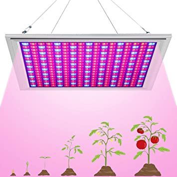 Growing-Lamp-289-LEDs-150W-by-Venoya