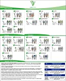 "Product review for Exercise Poster for Whole Body Vibration Machines 18"" x 24"""