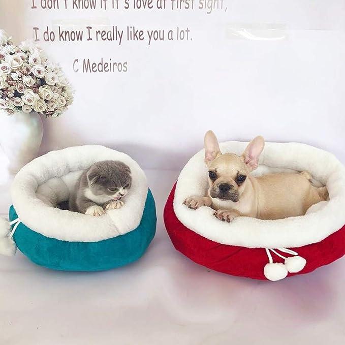 YYZ Redondo Camas para Perros, Mantener Caliente Sólido Suave Confortable Respirable para Gatos y Perros pequeños y medianos Camas para Gatos- Lavable,Blue ...