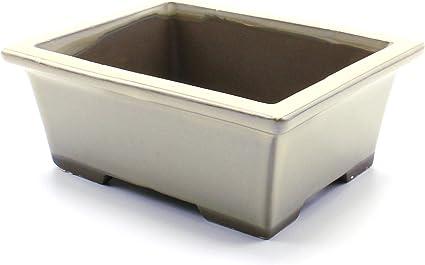 Amazon Com Bonsai Pot Ceramic Rectangle Glazed 5 25 Cream Yu Garden Outdoor