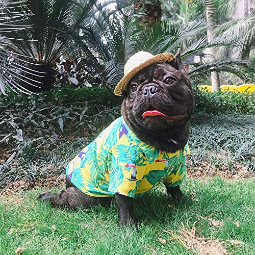 YOUDirect Pet Hawaiian Shirt Dog Summer T-Shirt Puppy Clothing Hawaiian Breeze Seaside Resort Style French Bulldog Pug Beachwear (M, Yellow) ()