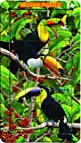 Outset Media Lenticular Puzzle In A Tin: Toucans