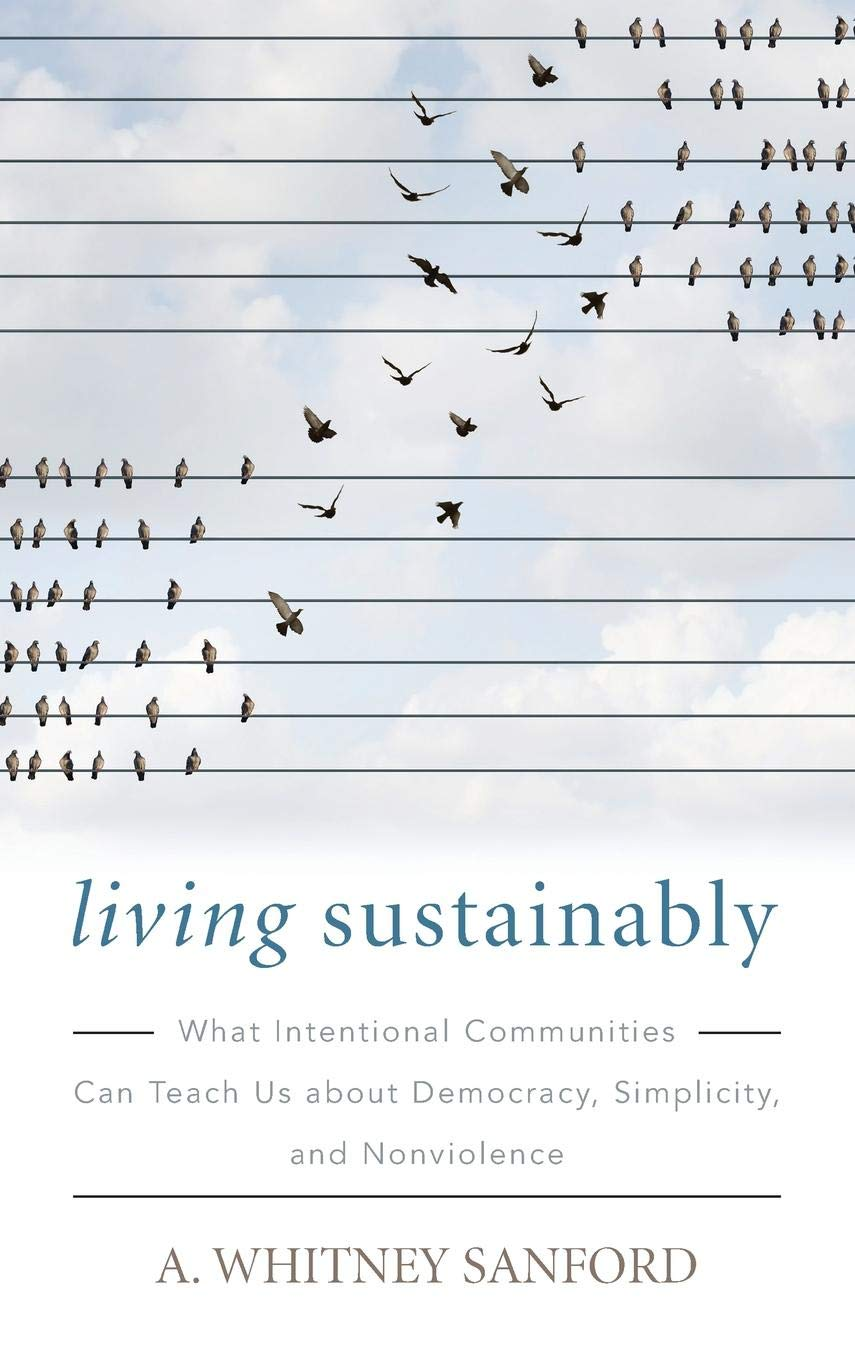 Download Living Sustainably: What Intentional Communities Can Teach Us about Democracy, Simplicity, and Nonviolence (Culture Of The Land) pdf epub
