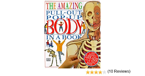 pull out art the amazing pull out pop up body in a book dk amazing pop up