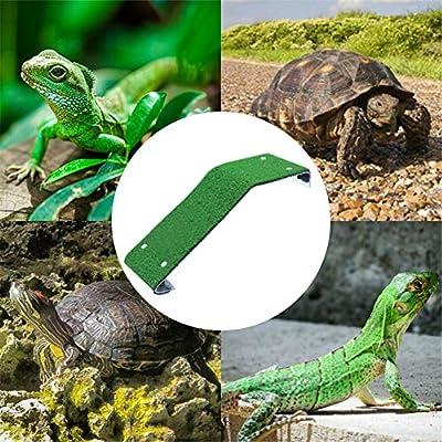 Blentude - Escalera de escalada de tortuga flotante, plataforma de secado de tortugas, forma de rana de reptil, accesorio de decoración para tanque de acuario: Amazon.es: Hogar