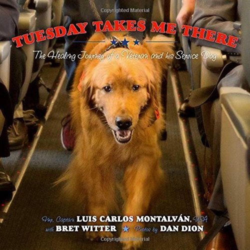 tuesday-takes-me-there-the-healing-journey-of-a-veteran-and-his-service-dog