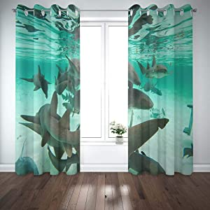 Shorping 52X84 Inch 3D Window Curtains, Privacy Window Curtain Shark Ray Alley Sand Caulker Pedro Belize Window Blackout Curtains for Bedroom,2 Pc