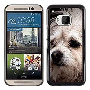 PC/Aluminum Funda Carcasa protectora para HTC One M9 Bolognese Mutt Dog White Fur Canine / JUSTGO PHONE PROTECTOR