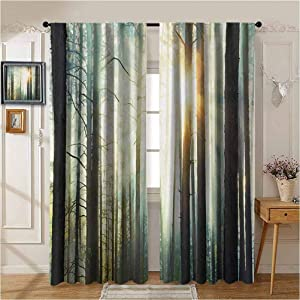 Nature Drapes/Draperies Mist in The Enchanted Forest with Sunbeams Painting Effect Digital Art Image Printed Darkening Curtains W96 x L96 Seafoam Dark Brown