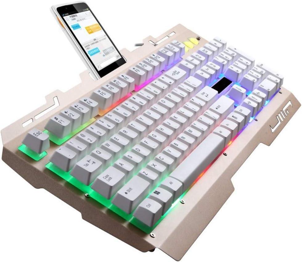 Computer LAIZI Gaming Keyboard,Colorful Rainbow LED Backlit USB Wired Keyboard PC Gamer Ultra-SlimAll-Metal PanelSpill-Resistant Design for Desktop