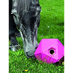 Shires Horse Pony Equine Ball Feeder Stable Toy Treat Ball Green 9""