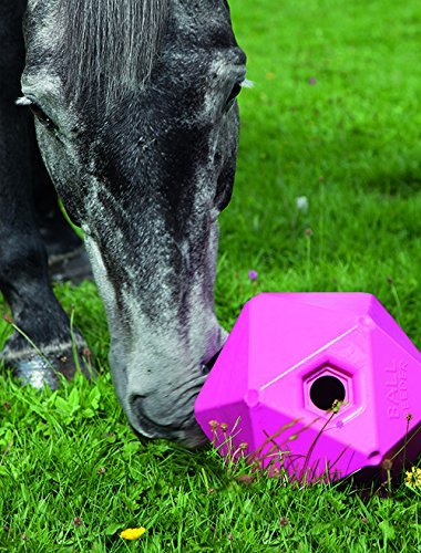 Shires Horse Pony Equine Ball Feeder Stable Toy Treat Ball Orange 9