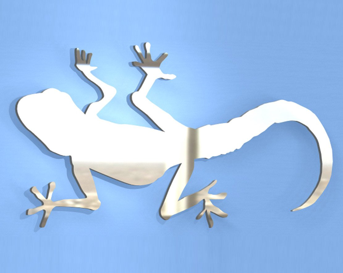 Lizard Mirror - Available in various sizes, including sets for crafting kits - 50cm x 28cm