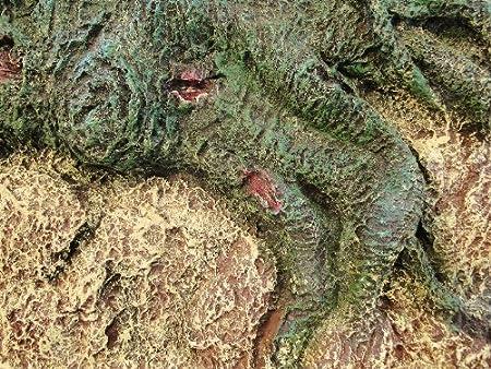 Todos Estanque Soluciones Árbol raíces Acuario/de Cristal 3D Fondo, 150 x 60 x 10 cm: Amazon.es: Productos para mascotas
