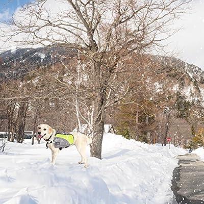 Petsfit Dog Travel Camping Backpack Saddle Bag Rucksack