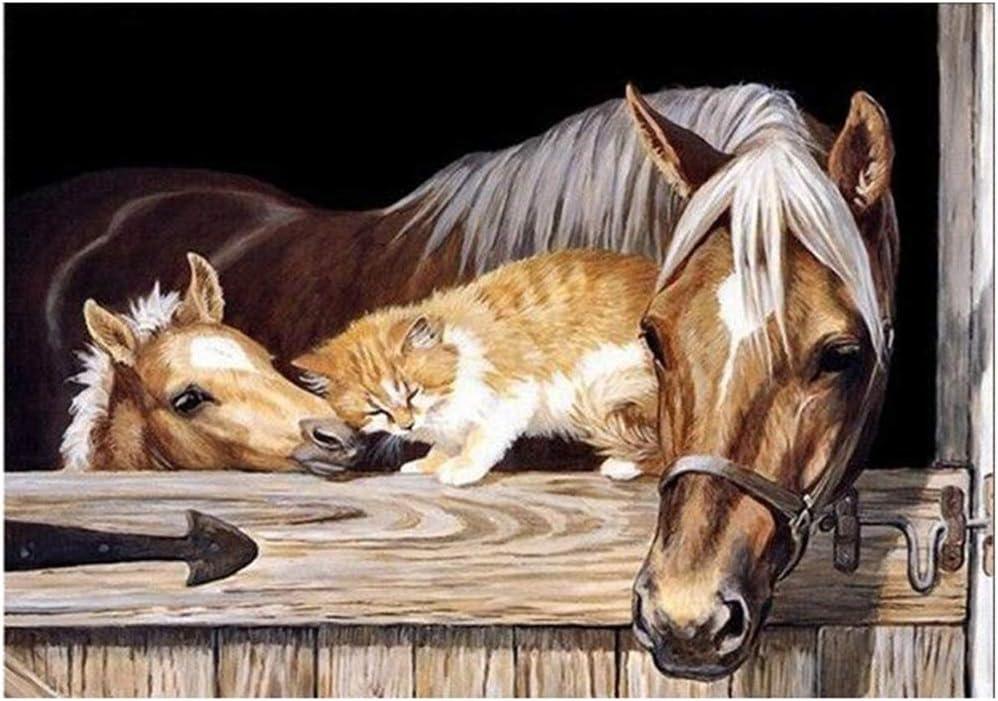 Pintura por numeros,El caballo Sunnay Pintura por N/úmero de Kits DIY Pintura al Crystal Full Diamond Rhinestone para Adultos Ni/ños 5D,30 x 40 cm