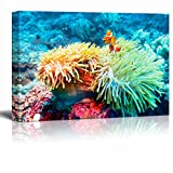 Canvas Wall Art - Underwater Landscape with Clown Fish near Tropical Coral Reef, Bali, Indonesia | Modern Home Decor Canvas Prints Gallery Wrap Giclee Printing & Ready to Hang - 16'' x 24''