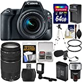 Canon EOS Rebel SL2 Wi-Fi Digital SLR Camera & 18-55mm IS STM (Black) + 75-300mm Lens + 64GB Card + Flash + Video Light + Battery/Charger + Tripod Kit