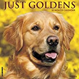 Goldens - 2016 Calendar 12 x 12in