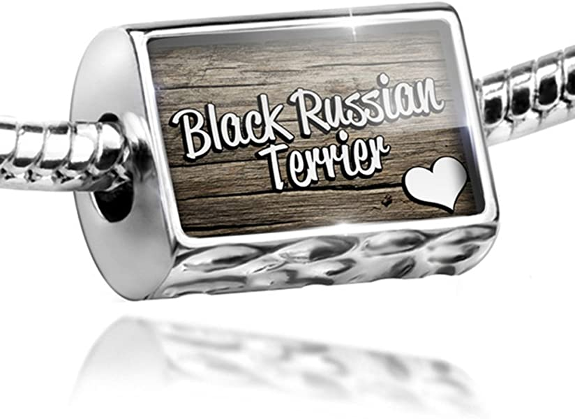 0eeba97ef Amazon.com: NEONBLOND Charm Black Russian Terrier, Dog Breed - Bead Fit All  European Bracelets, Neo: Jewelry