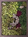 Carpentree 25''x33'' Nature's Glory-Biophilic Framed Art