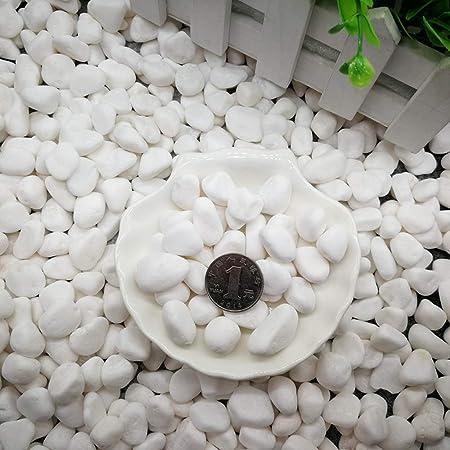 XTXWEN Piedra Blanca Natural, Decorada con Piedra Blanca Original, Decoración De Paisajismo De Acuario, Pavimentación De Piedra En Maceta, 500G / Bolsa,M: Amazon.es: Hogar