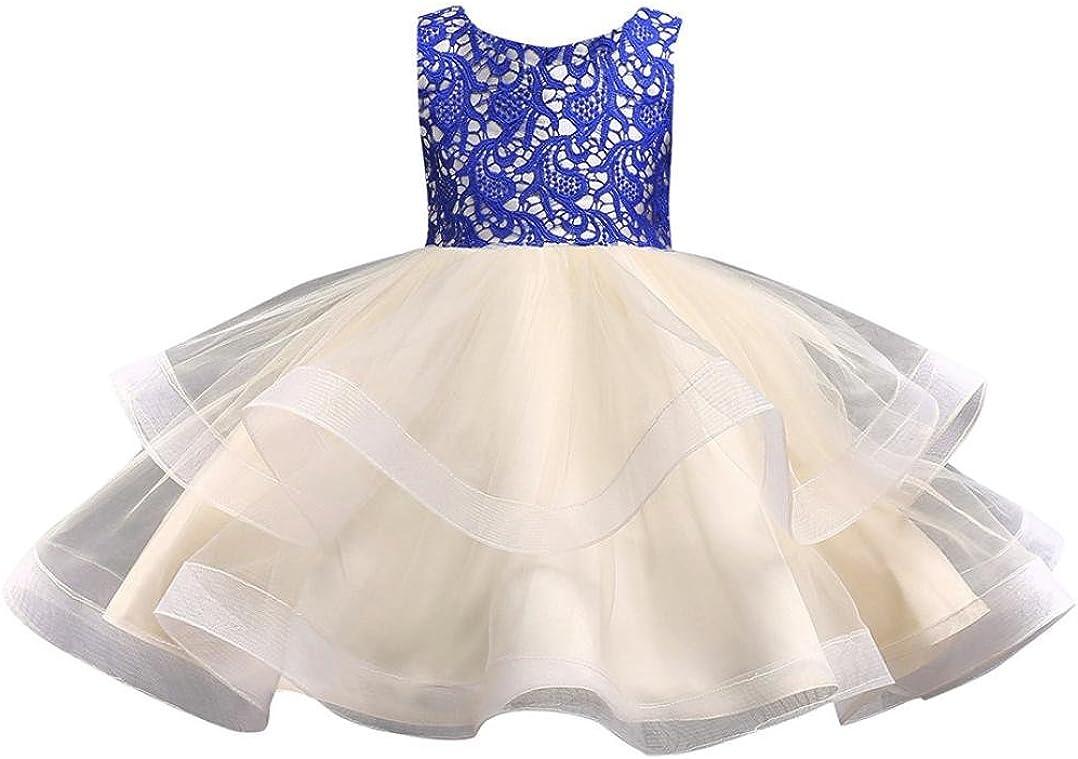 Hirolan Kinderkleidung Blumen Baby M/ädchen Prinzessin Brautjungfer Festzug Kleid Geburtstag Party Hochzeitskleid Abendkleide Kinderkleider Festkleider Bow unregelm/ä/ßiger Rock